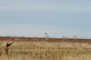 Upland Hunter